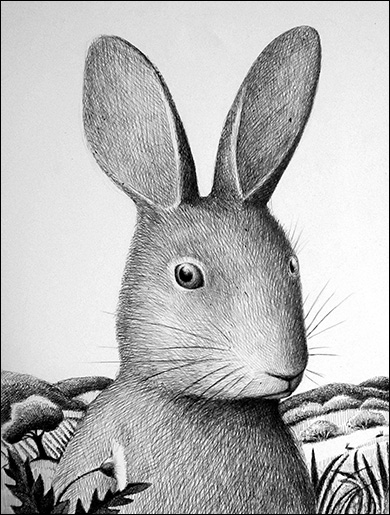 Rabbit, Anne Hunter, Illustrator