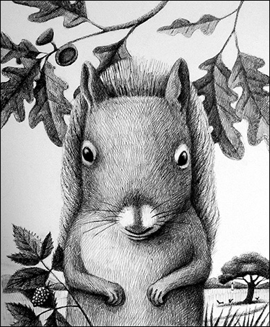 Squirrel, Anne Hunter, Illustrator