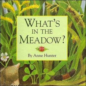 What's in the Meadow?