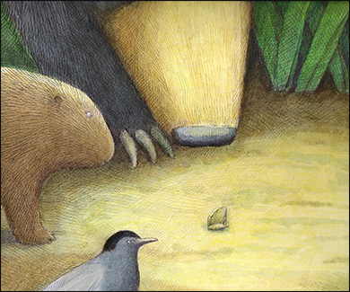 Peeper, Anne Hunter, Author and Illustrator
